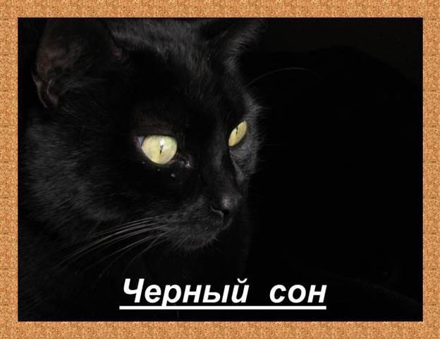 Чёрный Сон.Леонид  Западенко