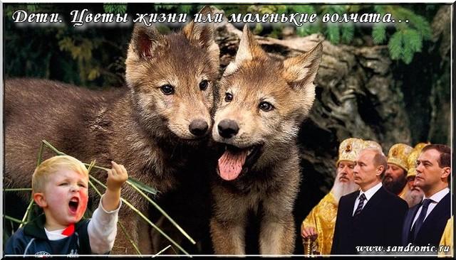 Дети. Цветы жизни или маленькие волчата…