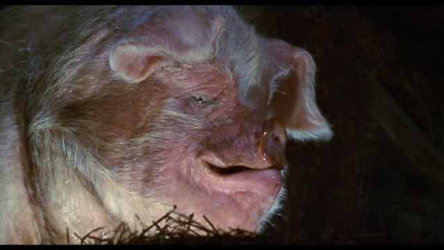 СКОТНЫЙ ДВОР / ANIMAL FARM (1999) DVDrip