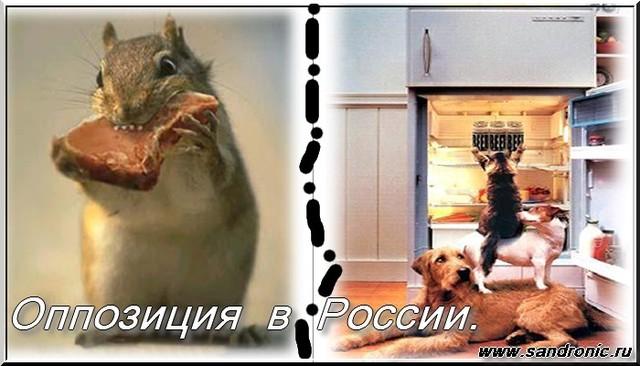 Оппозиция  в  России. Взрослые дяди  забавляются