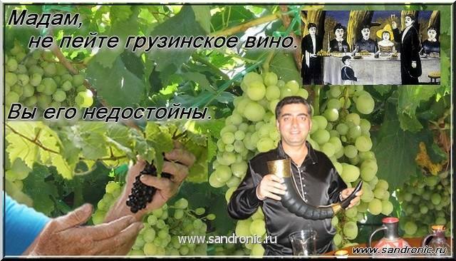 Мадам, не пейте грузинское вино. Вы его недостойны