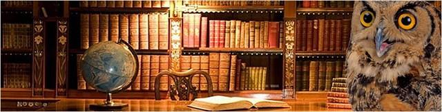 Gorg.Библиотека.