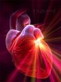 Физические нагрузки и сердце