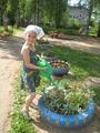 Уход за растениями на групповом участке