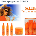 Sun Flower CUREX.